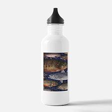 Fish! Water Bottle