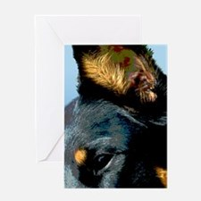 Beauceron Graphic 4 Greeting Card