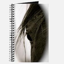 Eyecatcher Journal