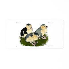 Blue Magpie Ducklings Aluminum License Plate