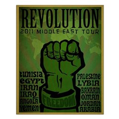 Middle East Revolution 2011 T Posters