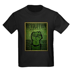 Middle East Revolution 2011 T T