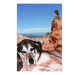 Doberman Shepherd Mix Postcards (Package of 8)