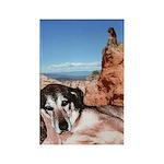 Doberman Shepherd Mix Rectangle Magnet (100 pack)