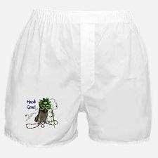 Mardi Gras Cairn Terrier Boxer Shorts
