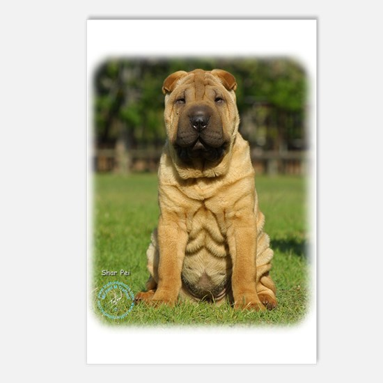 Shar Pei 9M100D-049 Postcards (Package of 8)
