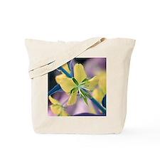 Alt.Colors02 Tote Bag