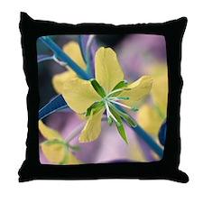 Alt.Colors02 Throw Pillow