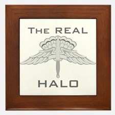 Real HALO Framed Tile