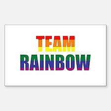 Team Rainbow Decal