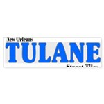 New Orleans Streets Sticker (Bumper 10 pk)