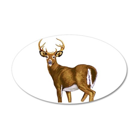 American White Tail Deer Buck 20x12 Oval Wall Deca
