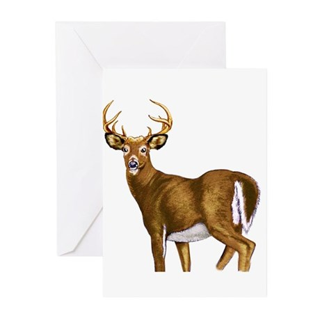 American White Tail Deer Buck Greeting Cards (Pk o