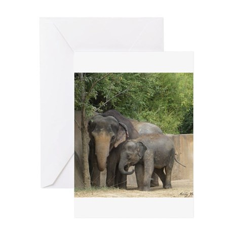 elephant4 Greeting Cards
