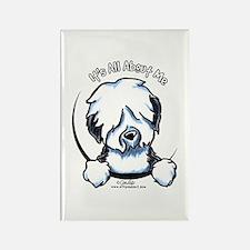 Old English Sheepdog IAAM Rectangle Magnet