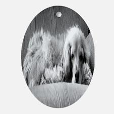 Lady the Cocker Spaniel Oval Ornament