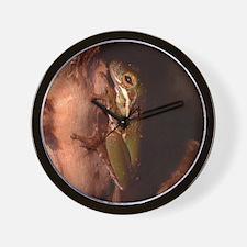 Spot - Tree Frog Wall Clock