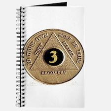 3 YEAR COIN Journal