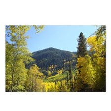 Aspens in Autumn Postcards (Package of 8)