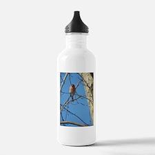 Female Cardinal Bird Water Bottle
