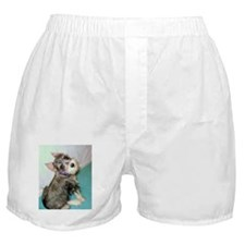Too Cute Imp Boxer Shorts