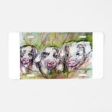 Pigs, 3 Piglets, Cute, Aluminum License Plate