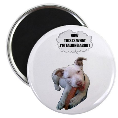 NOW THATS WHAT IM TALKING ABOUT PIT BULL Magnet