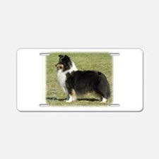 Shetland Sheepdog 9J088D-06 Aluminum License Plate