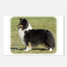 Shetland Sheepdog 9J088D-06 Postcards (Package of