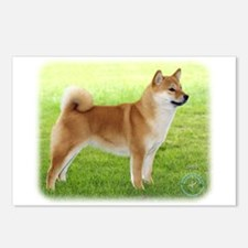 Shiba Inu 9R060D-078 Postcards (Package of 8)