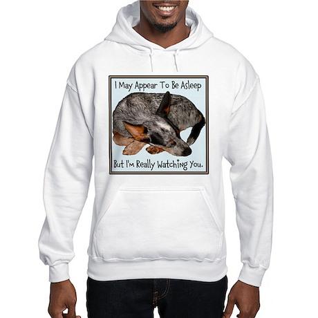 Heelology 102 - Hooded Sweatshirt