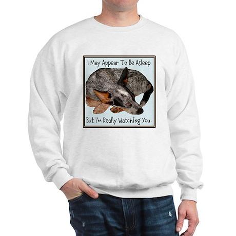 Heelology 102 - Sweatshirt