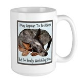 Australian cattle dog Drinkware