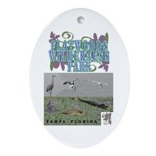 Flatwoods park Oval Ornament
