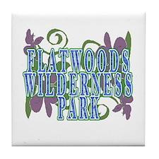 Flatwoods park Tile Coaster