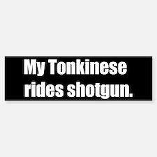 My Tonkinese rides shotgun (Bumper Sticker)
