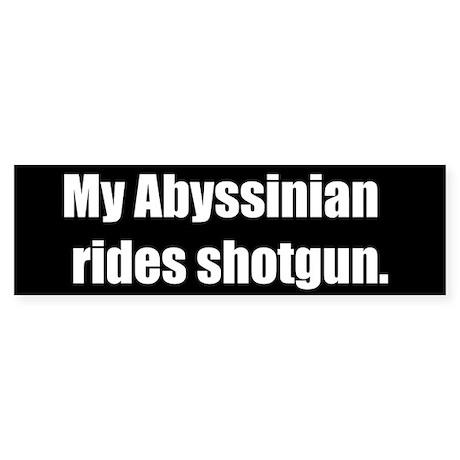 My Abyssinian rides shotgun (Bumper Sticker)