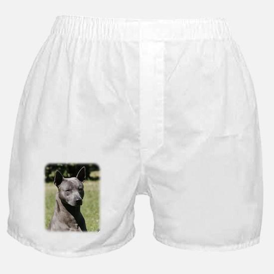Thai Ridgeback 9Y815D-273 Boxer Shorts
