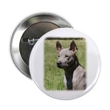 "Thai Ridgeback 9Y815D-302 2.25"" Button"