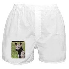 Thai Ridgeback 9Y815D-302 Boxer Shorts