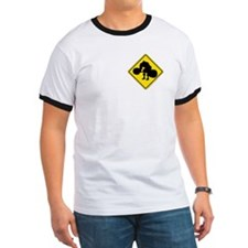 DEADLIFTING ZONE - T