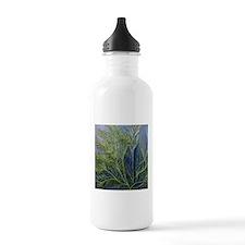 Unique Algae Water Bottle
