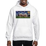 Starry / 2 Affenpinschers Hooded Sweatshirt