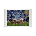 Starry / 2 Affenpinschers Rectangle Magnet
