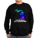 Say Yes To Michigan and The M Sweatshirt (dark)