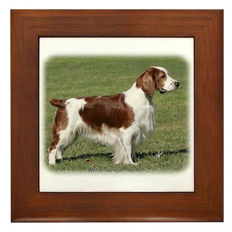 Welsh Springer Spaniel 9Y394D-041 Framed Tile