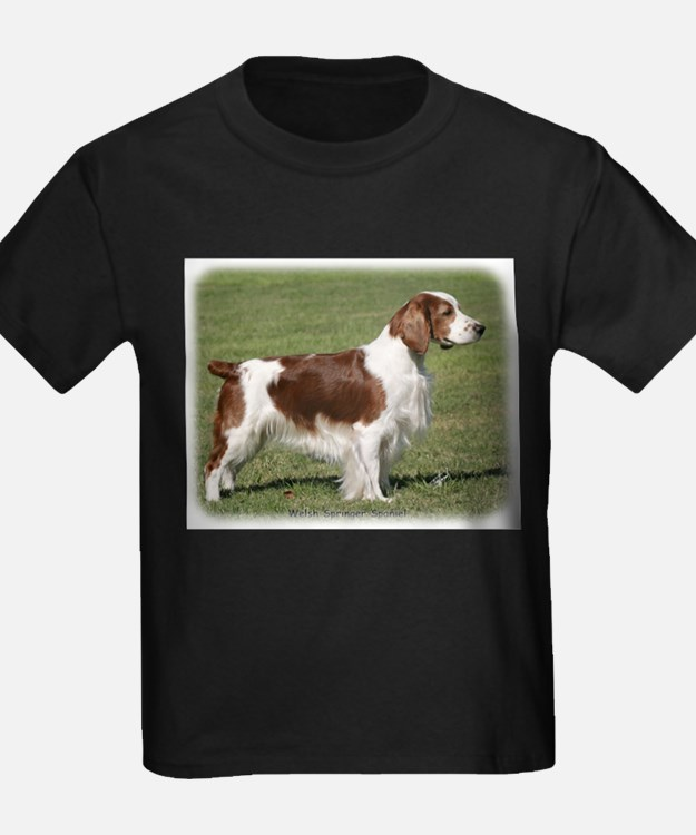 Welsh Springer Spaniel 9Y394D-041 T