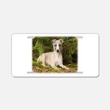Whippet 9Y563D-005 Aluminum License Plate