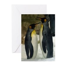 Penguin Duo Greeting Cards (Pk of 10)