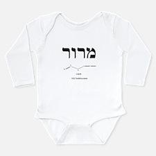 Unique Passover Long Sleeve Infant Bodysuit